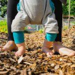 Kako mi je vrt spremenil življenje & na kaj bodite pozorni pri najemanju vrta